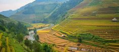 Mu Cang Chai - Ku Bao Chay (Chòi Vọng Cảnh) North Vietnam, Rice Terraces, Bus Tickets, Bus Travel, Historical Monuments, Places Of Interest, Best Sites, Summer Months, Hanoi