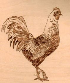 Google Image Result for http://3.bp.blogspot.com/-6_1expSTrdw/T-L3YUO5AAI/AAAAAAAABH0/MTZb97PgN7A/s300/rooster.jpg
