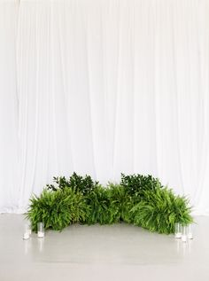 This Ceremony Aisle Takes Ferns to a Whole New Level of Beauty