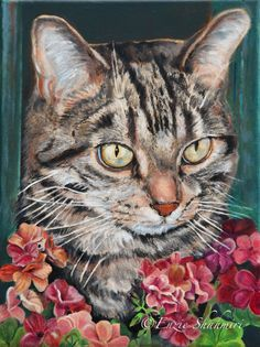 Custom Pet Portraits painted with Oils - Cooper the Cat    ...BTW,Please Check this out:  http://artcaffeine.imobileappsys.com Would love to do this!