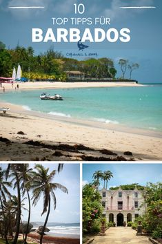 Barbados ist die östlichste Insel der kleinen Antillen in der Karibik und einer der schönsten. Wenn Du einen Urlaub in der Karibik planst, solltest Du diese 10 Tipps für Barbados unbedingt gelesen haben! Cornwall, Strand, German, Beach, Water, Travel, Outdoor, Island, Destinations