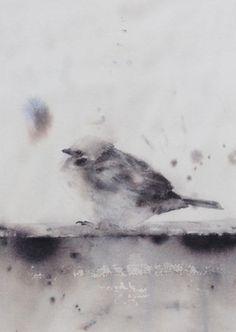 Sparrow in watercolor sparrow print illustration bird