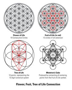 """""""The knowledge of which geometry aims is the knowledge of the eternal"""" -Plato - Tattoo MAG Geometric Tattoo Meaning, Geometric Symbols, Geometric Tattoo Design, Geometric Art, Sacred Geometry Meanings, Sacred Geometry Patterns, Sacred Geometry Tattoo, Geometry Shape, Les Chakras"""