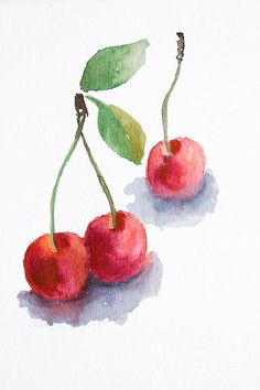 Watercolor Cherry. - Regina Jershova