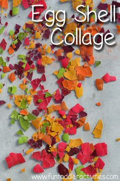 Fun Toddler Activities: Make an egg shell collage on contact paper!