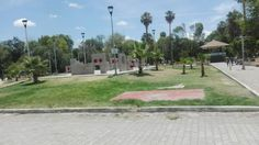 No hay areas verdes en Torreón