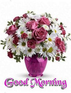 Good Morning Happy Sunday, Good Morning Gif, Good Morning Flowers, Good Morning Beautiful Pictures, Good Morning Picture, Morning Pictures, Morning Images, Morning Quotes, Pink Daisy