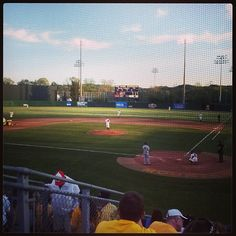 WVU Baseball! Photo Cred: @Kari Tjossem