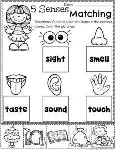 Terrific Pictures 5 senses preschool crafts Popular This page provides SO MANY Kids crafts which are acceptable for Preschool and Small children. I believed it was time p Five Senses Preschool, 5 Senses Activities, My Five Senses, Preschool Themes, Preschool Lessons, Preschool Learning, Kindergarten Worksheets, Kindergarten Activities, Preschool Activities
