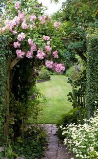 Beautifully arched,