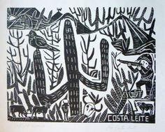José Costa Leite, Drought.