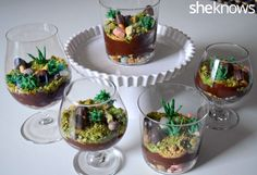 Edible terrarium cups complete with rocks, mushrooms and succulents will make you forget all about dirt cups