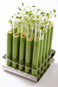 Novel green tomato gazpacho shooters are topped with toasted almonds and micro cilantro.