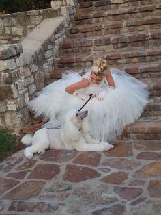 #Poodle #wedding