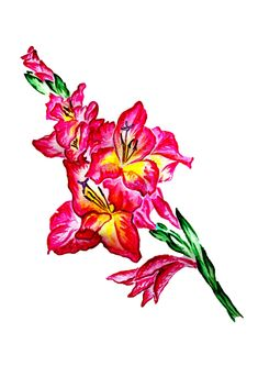 Inspired by memories of Gladiolus fields. Colors, emotions, smell, beauty of nature. Size: or cm. Materials used: watercolors. Gladiolus, Selling Art, Lovers Art, Watercolors, Buy Art, A4, Fields, Natural Beauty, Original Art