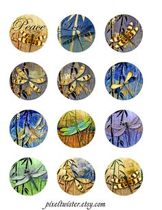 Dragonflies Moon Bamboo Digital Collage Rounds by pixeltwister