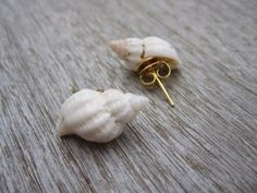 Sea shell earrings i should so make these. Old pare of plain earrings , glue and a seashell !