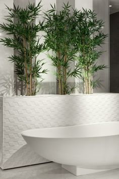 Love Tiles showroom in Lisbon, season 2013-2014 Interior design by Catarina Batista