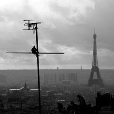 The timeless romance of Paris <3