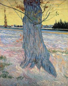 Vincent van Gogh - Der Baum, Arles