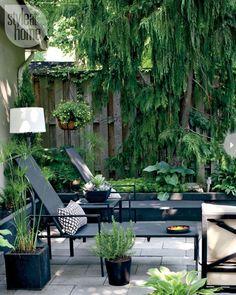 Creating a Dream Backyard Experience - East Coast Creative Blog