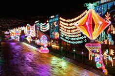 Witness over 15 million lights in every colour of the rainbow at the City of Eternal Spring - Medellín. Christmas Displays, Christmas Lights, Christmas Fun, Christmas Decorations, Holiday, Travel Presents, Travel Essentials, Homeland, Rainbow Colors