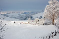 Tazewell County, Virginia on a snowy day. Photo by WS Wolf.