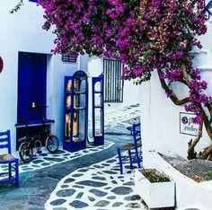 Picturesque street in Skiathos Island, Greece