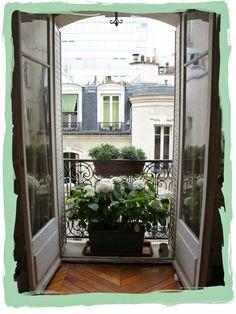 have some decorum: Parisian Apartment. Part Neuf. L'appartement: Le Balcon.