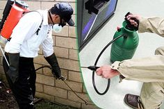 There is Pest Control Ottawa service available, they need to employ under only those situations where it is absolutely essential. People want to remember that prevention is the best form of controlling pests. There are higher fluids and liquids available in the market as part of advanced pest control services.  For more information, visit our website: http://www.ottawapestcontrolexperts.com/