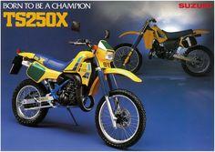 Suzuki TS250X