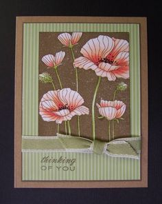 CC377 Blushing Poppies by hobbydujour - Cards and Paper Crafts at Splitcoaststampers