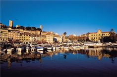 Cannes, Provence.  Offering so much more than just a film festival!#loccitane#repinforsweetskin