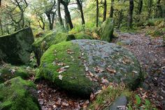 Millstone in Padley Gorge by Graham Hogg, via Geograph