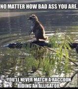 bad ass riding an alligator