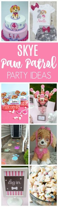 21 Skye Paw Patrol Party Ideas