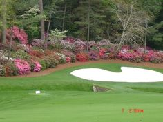 The Masters Golf Tournament...Augusta Ga  My favorite golf course with unparalleled beauty....  This is a famous picture.