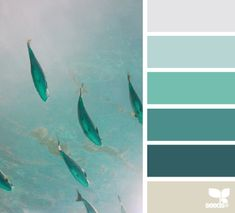 Nature inspired color palette design seeds 32 Ideas for 2019 Scheme Color, Colour Pallette, Colour Schemes, Color Patterns, Color Combos, Design Seeds, World Of Color, Color Of Life, Color Concept