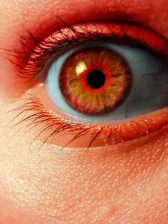 orange eyes of fire: one of my characters will have these eyes...
