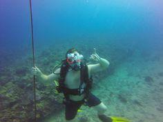 #hawaii #scuba http://rainbowscuba.com/seatiger.html @rainbowscuba