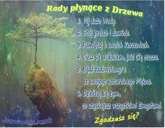 poRady do Drzewa www.jasnowidzjacek.blogspot.com