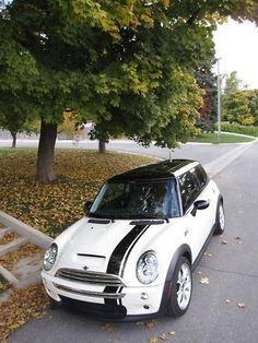 Mini Cooper offset Rally Stripe Stripes Decals Graphics   eBay