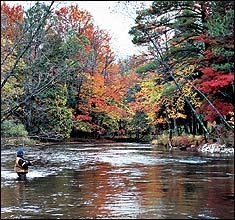 One of the best trout fishing rivers in the country!!! Current record holder of the largest brown trout even caught.