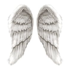 tubes ailes ❤ liked on Polyvore featuring wings, fillers, angel, backgrounds, accessories and effects