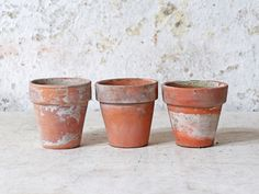 These lovely large-sized rustic terracotta plant pots - sold as a set of 3- would be the perfect home for your self-grown kitchen herbs. #plantpots #terracottapots #terracotta #gardeninspo Repurposed Furniture, Vintage Furniture, Terracotta Plant Pots, Kitchen Herbs, Interior Accessories, Potted Plants, Planter Pots, Restaurant, Rustic