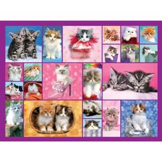Shop Bits and Pieces jigsaw puzzle store for kids and adults! This cute cat collage puzzle by Keith Kimberlin measures x On sale now! Jigsaw Puzzle Store, New Puzzle, Disney Cats, Best Memories, 500 Piece Jigsaw Puzzles, Kittens, Gift Wrapping, Cute, Ideas