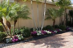 Florida Landscaping Ideas | Landscaping Decoration Idea: Florida Landscaping Ideas