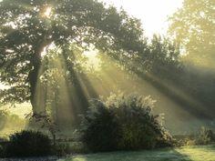Sunrise Sunbeams, Shrapshire England