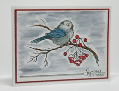 Miriam Prantner: Stampendous Snow Bird; Tombow markers and Tombow Irojiten Color Pencils pencils