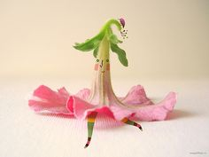 ~~ Miss Flower